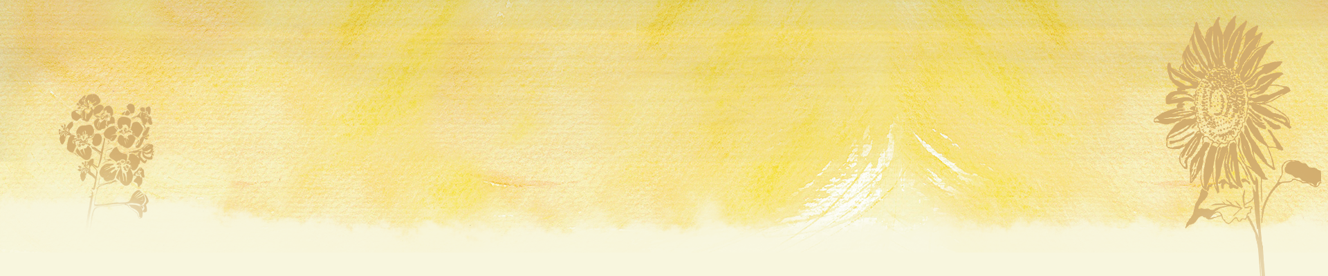 Moritz Speiseöle - natives Raps- und Sonnenblumenkernöl