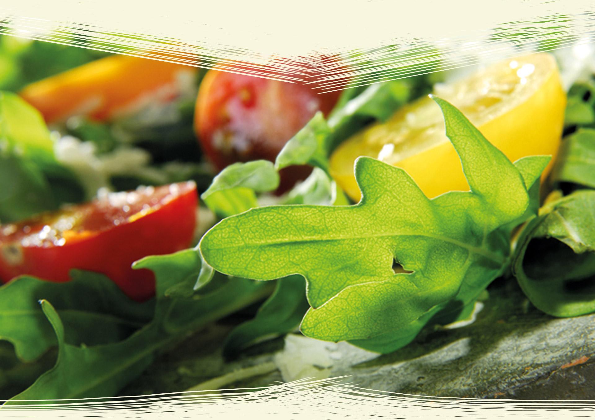 Salat mit Rapsoel